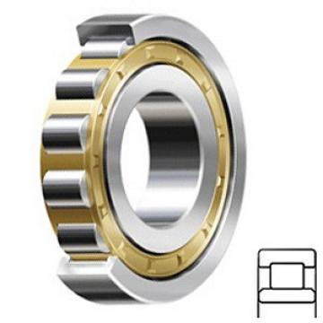 Cylindrical Roller Bearings NU330EMA